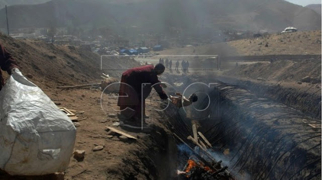 Waduh !! Wakil PM Turki Posting Foto Palsu Pembantaian Rohingya