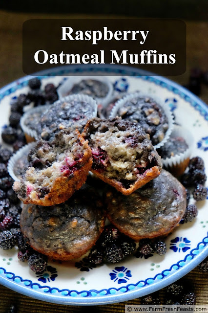 Black raspberries and brown sugar sweeten this oatmeal muffin recipe. A summer treat when berries are in season, or use frozen berries to enjoy summer flavor year round.