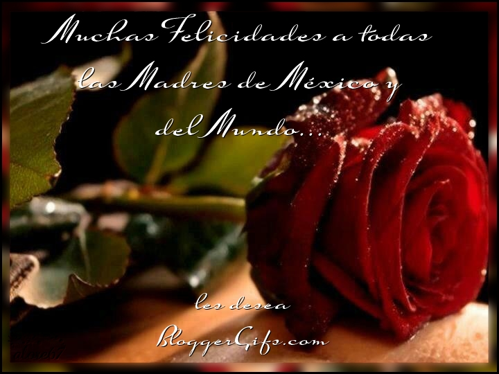 Muchas Felicidades a todas las Madres