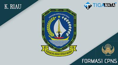 Formasi CPNS Pemprov Kepulauan Riau 2018