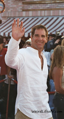 Scott Bakula at the Pirates of the Caribbean premiere