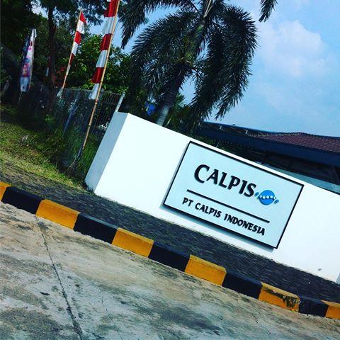 INFO Loker Via Email Terbaru EJIP PT Calpis Indonesia (CALPICO) Cikarang