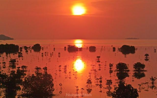Menantikan sang baskara tenggelam dari Mangrove Karimunjawa