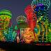 31 Photos: Our visit to Dubai Garden Glow