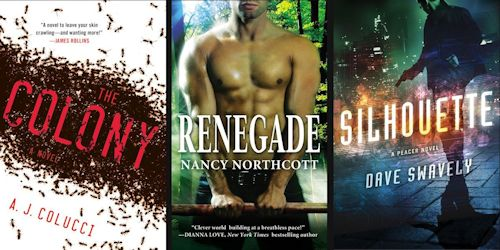 2012 Debut Author Challenge Cover Wars - November 2012 Winner
