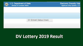 How to Check the DV 2019 Results