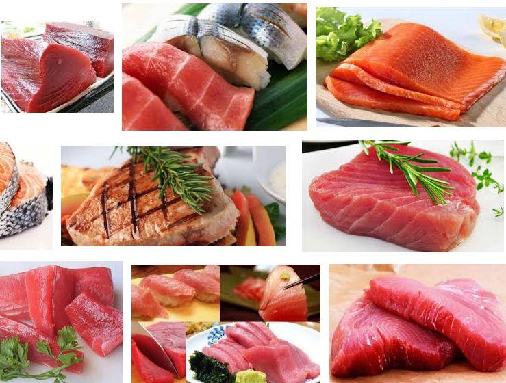 Manfaat Ikan Tuna untuk Kesehatan