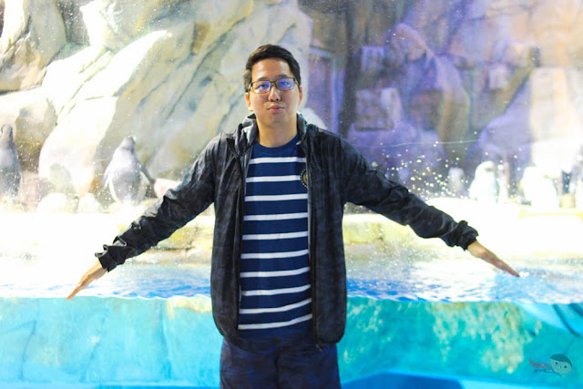 Renz Cheng with Penguins in Ocean Park