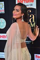 Prajna Actress in backless Cream Choli and transparent saree at IIFA Utsavam Awards 2017 0016.JPG