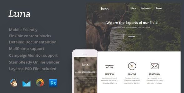 Luna - Responsive Email Template
