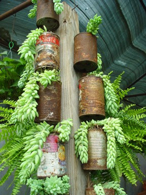 rust+tin+can+planter - DIY Tin Can Planters