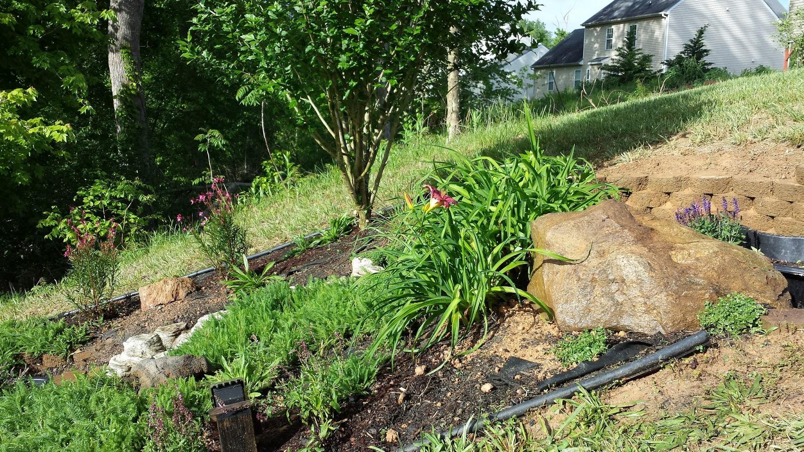 White Marble Chips For Landscaping Ideas Garden Inspiration
