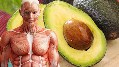 Your Body Will Thank You For Eating A Avocado Every Day