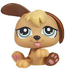 Littlest Pet Shop Petriplets Puppy (#1340) Pet