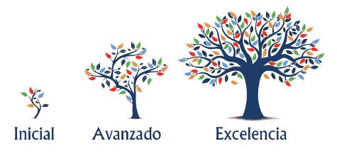 Los tres niveles de asesoramiento de Cuevas y Montoto Consultores: inicial, avanzado, excelencia.
