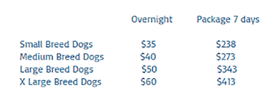 Dog hotels in singapore
