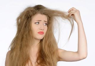 Cara merawat rambut kering