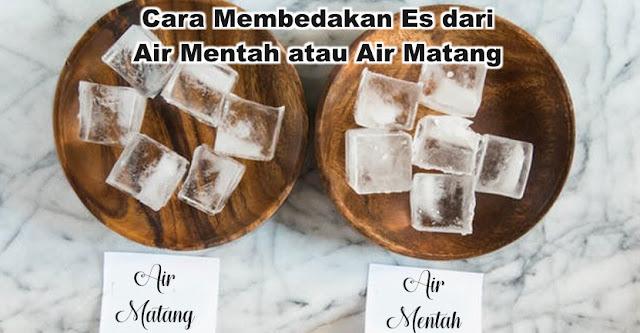 Penting! Cara Membedakan Es dari Air Mentah atau Air Matang