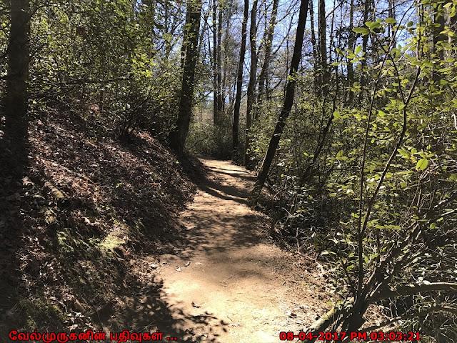 GA Minnehaha Falls  Hike