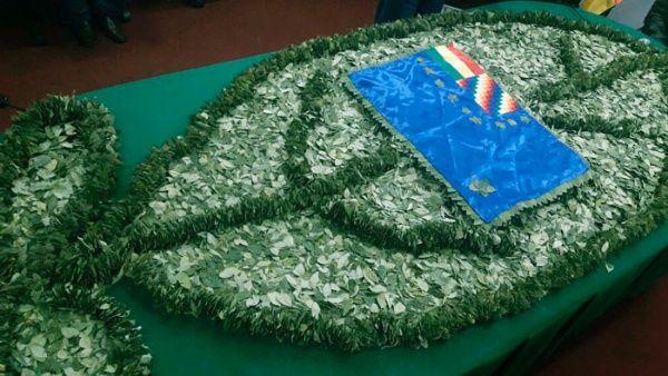Bolivia expone avances en desarrollo sostenible de la coca