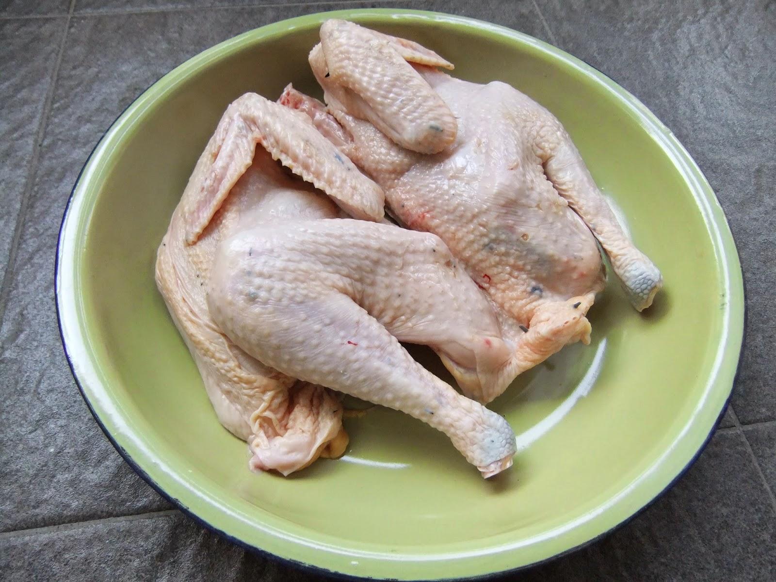 ayam kampung keras, perbedan daging ayam kampung