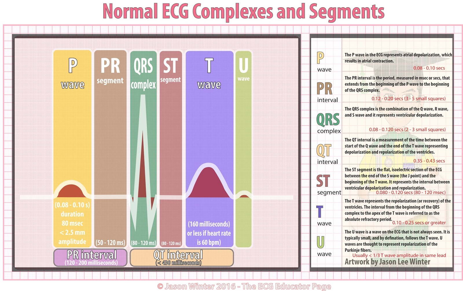 Ecg Educator Blog Basic Electrophysiology