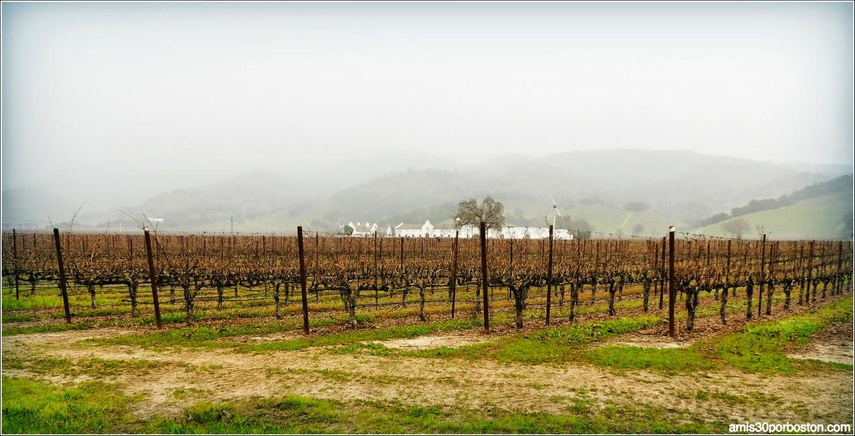 Valle de Napa y Sonoma en California