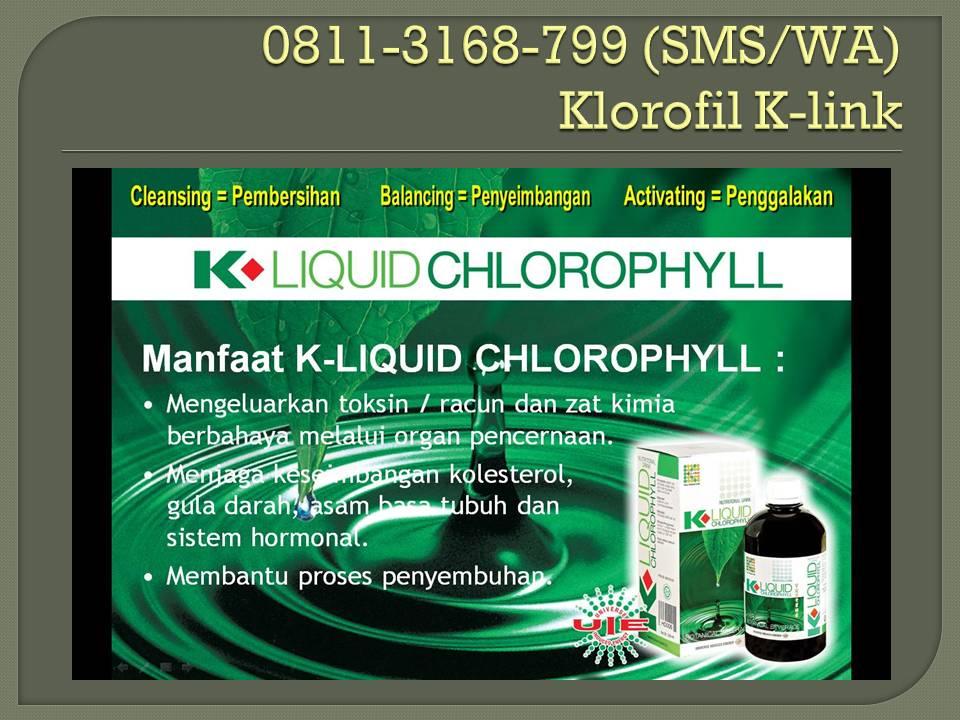 0823-3551-1698,Klorofil K-link