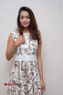Telugu Actress Reshmi Thakur in Long Dress at Plus One ( 1) Audio Launch  0028.jpg