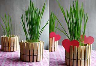 Membuat Pot Bunga dari stik eskrim