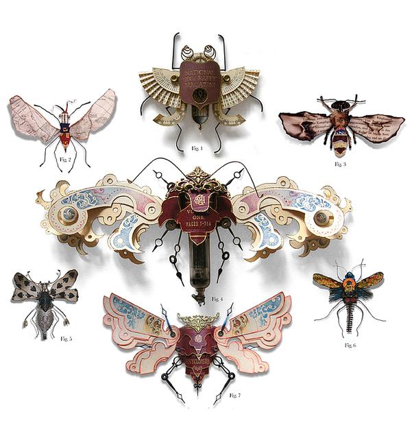 Insectos espectaculares diseñados por Mark oliver
