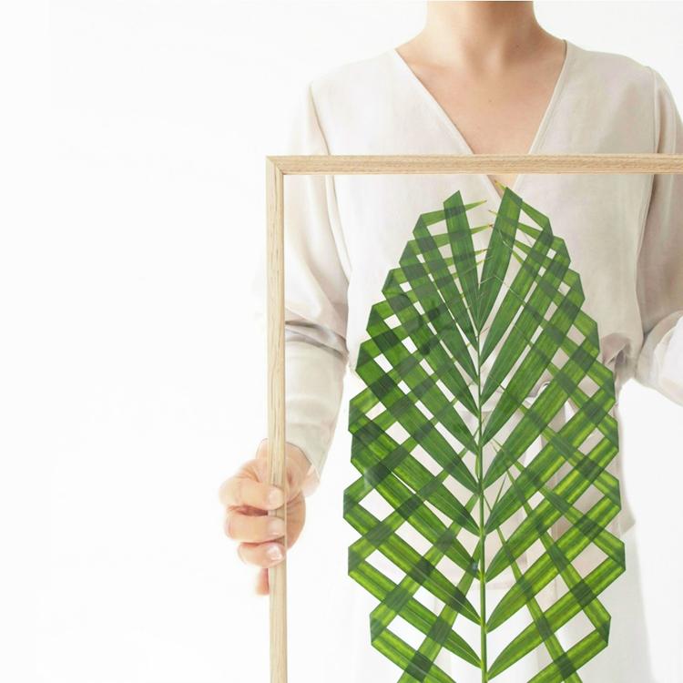diy-decoracion-hojas-plantas