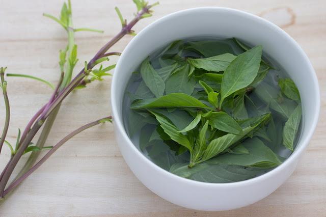 أعشاب فعالة لعلاج السعال الديكي