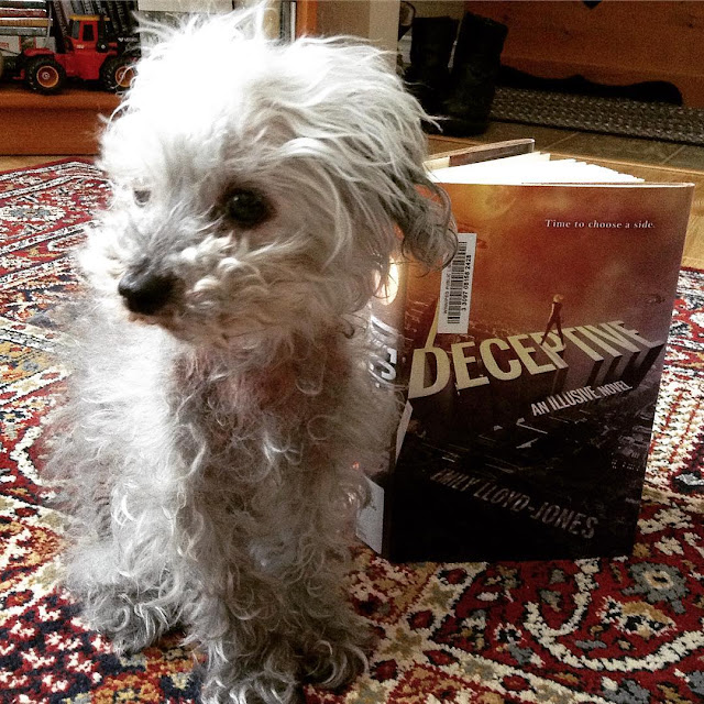 A fuzzy grey poodle, Murchie, sits on a burgundy carpet beside a hardcover copy of Deceptive. He's only a little taller than the book. His head is turned away from it. The book's orange and blue cover features a blonde white girl standing atop the title, which hovers diagonally above a cityscape.