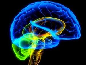 Algunos expertos en prospectiva tecnológica, que tratan de identificar los futuros avances en función de las investigaciones actuales, auguran que en unas décadas será posible digitalizar el yo, esto es, transferir a una máquina o a otro cuerpo nuestras capacidades mentales. Según uno de estos cibergurús, el inventor y director de Ingeniería de Google Ray Kurzweil, antes de mediados de siglo tendrá lugar la aparición de la inteligencia artificial. El avance potenciará de tal forma los sistemas informáticos que los seres humanos se verán abocados a combinarse con ellos mediante distintos tipos de implantes. De hecho, en su obra The