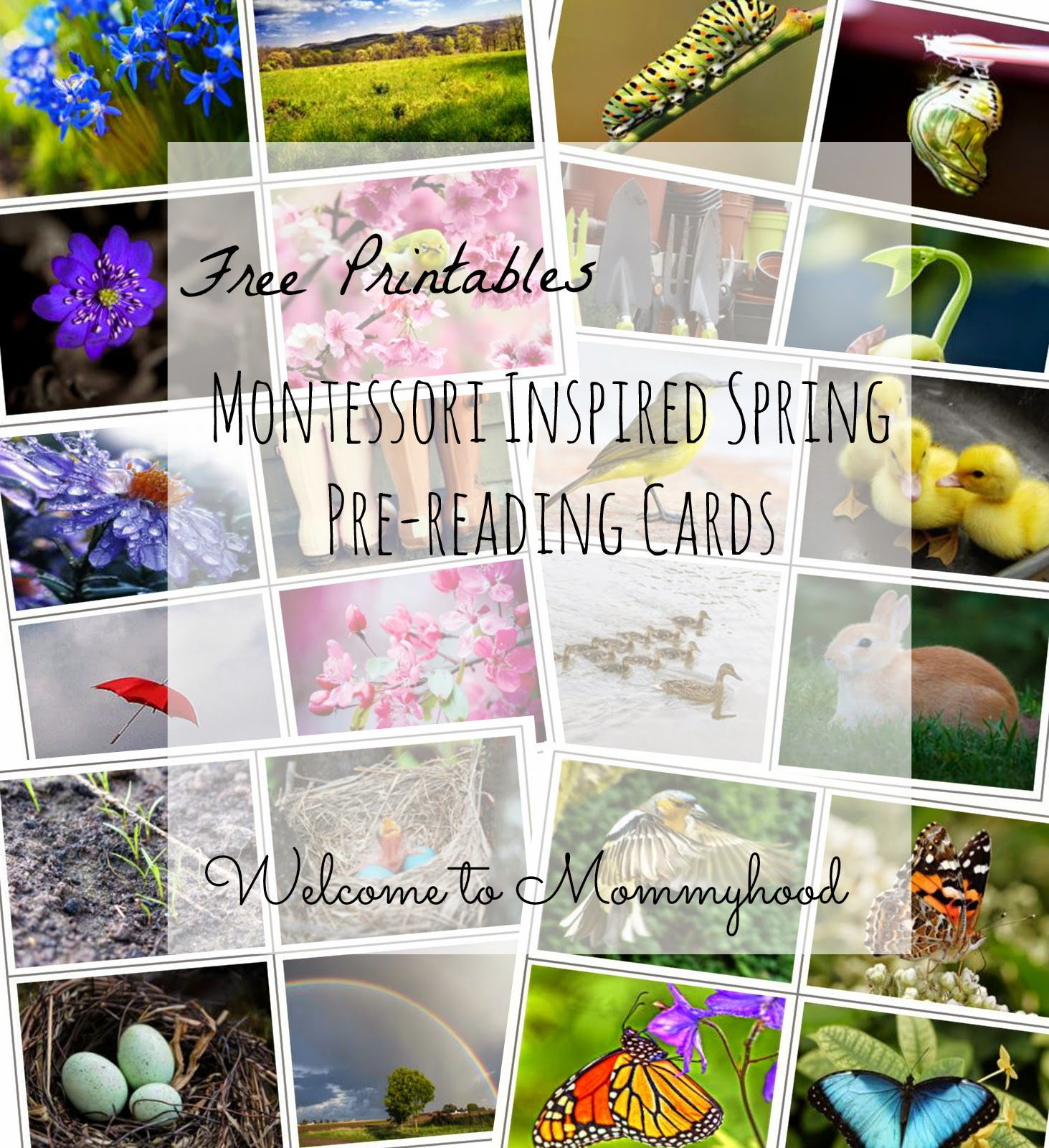 Free Montessori Printables: Spring Prereading cards by Welcome to Mommyhood #montessori, #toddleractivities, #montessoriactivities, #freeprintables