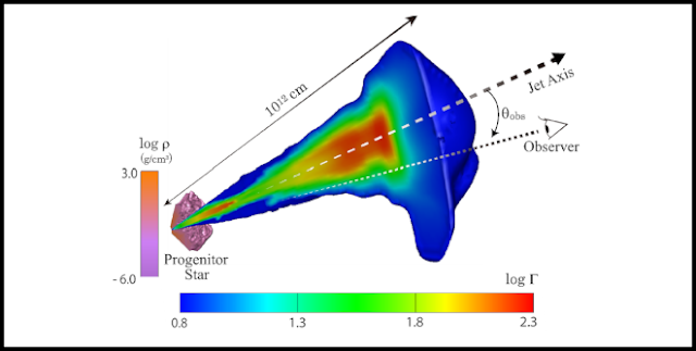 3D profile with a 2D slice taken through the midplane of the simulation at a laboratory time t = 40 s for the model with jet power Lj = 1050 erg/s. The profiles of the progenitor star and jet are visualized using color contours of mass density and Lorentz factor, respectively. Together with the simulation result, we also show the location of the jet axis (dashed arrow) and how we define the viewing angle θobs of an observer's line of sight (dotted line). Credit: RIKEN
