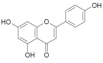 formula-quimica-apigenina-estrutura
