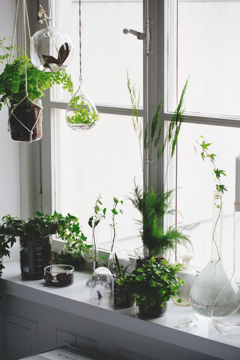 How To Macrame Plant Hangers For Beginners