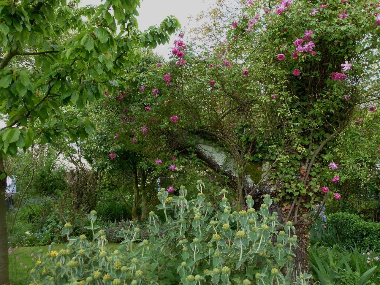 Le blog de parcs et jardins de l 39 oise visite pjo du for Jardins jardin 2016