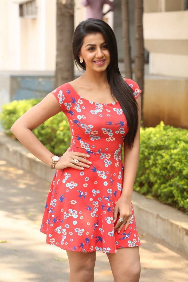 Nikki Galrani Hot Legs Showing Photos