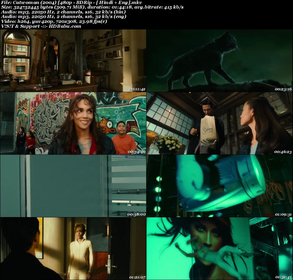 Catwoman (2004) 480p BDRip [ Hindi + Eng] 300 MB