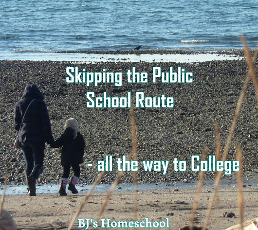 Skipping the Public School Route...all the way to College