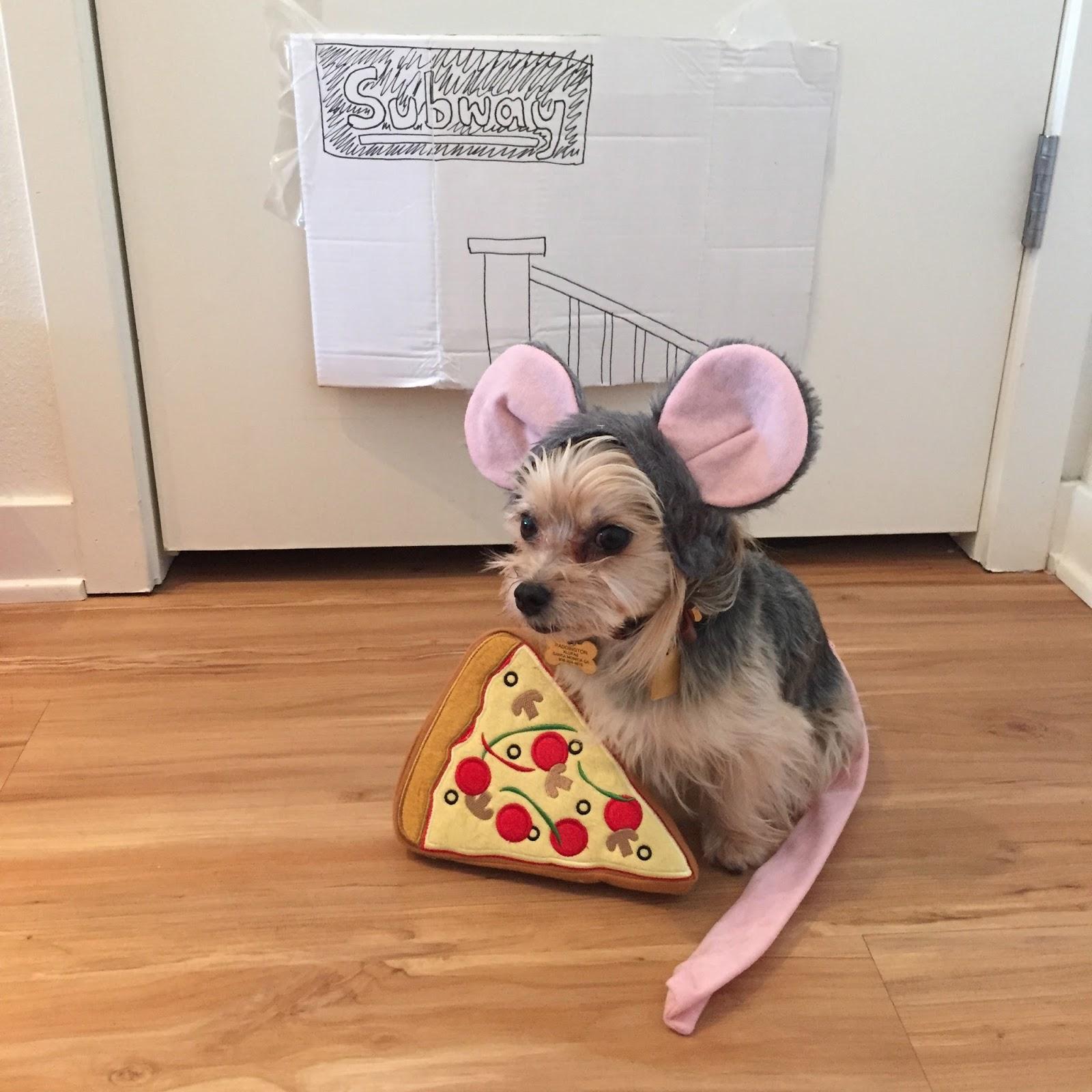 Barkzilla: A Savvy NYC Dog Blog: Pizza Rat Dog Costume!