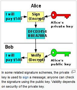 Rsa public key