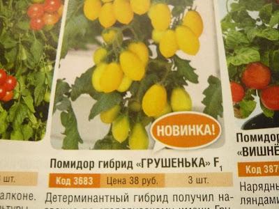 сорта помидор