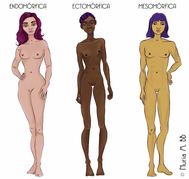 ¿Qué es el somatotipo? ¡Aprende a Identificar el Tuyo!