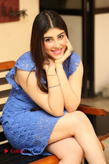 Actress Aditi Singh  Pictures in Short Dress at Movie Interview  0165