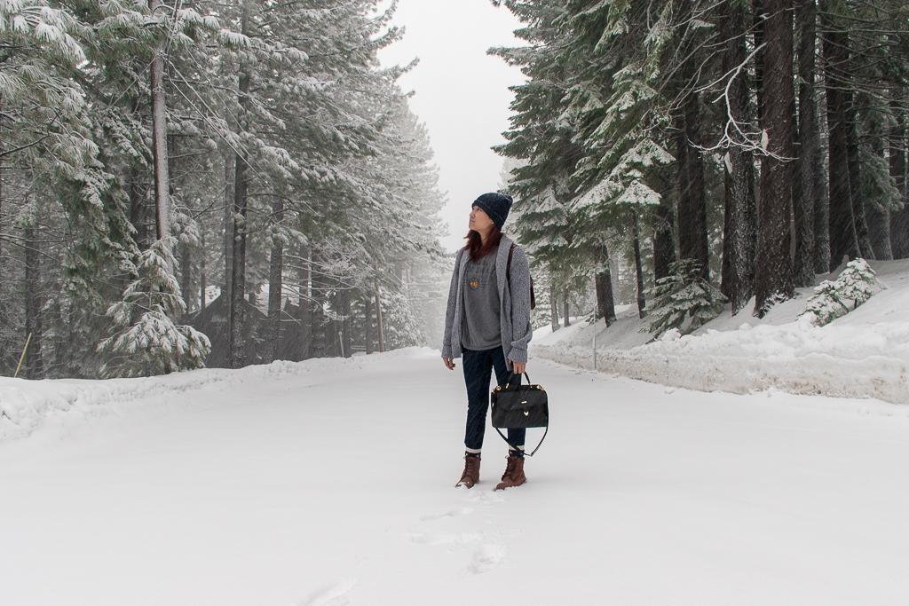 Snow landscape in tahoe