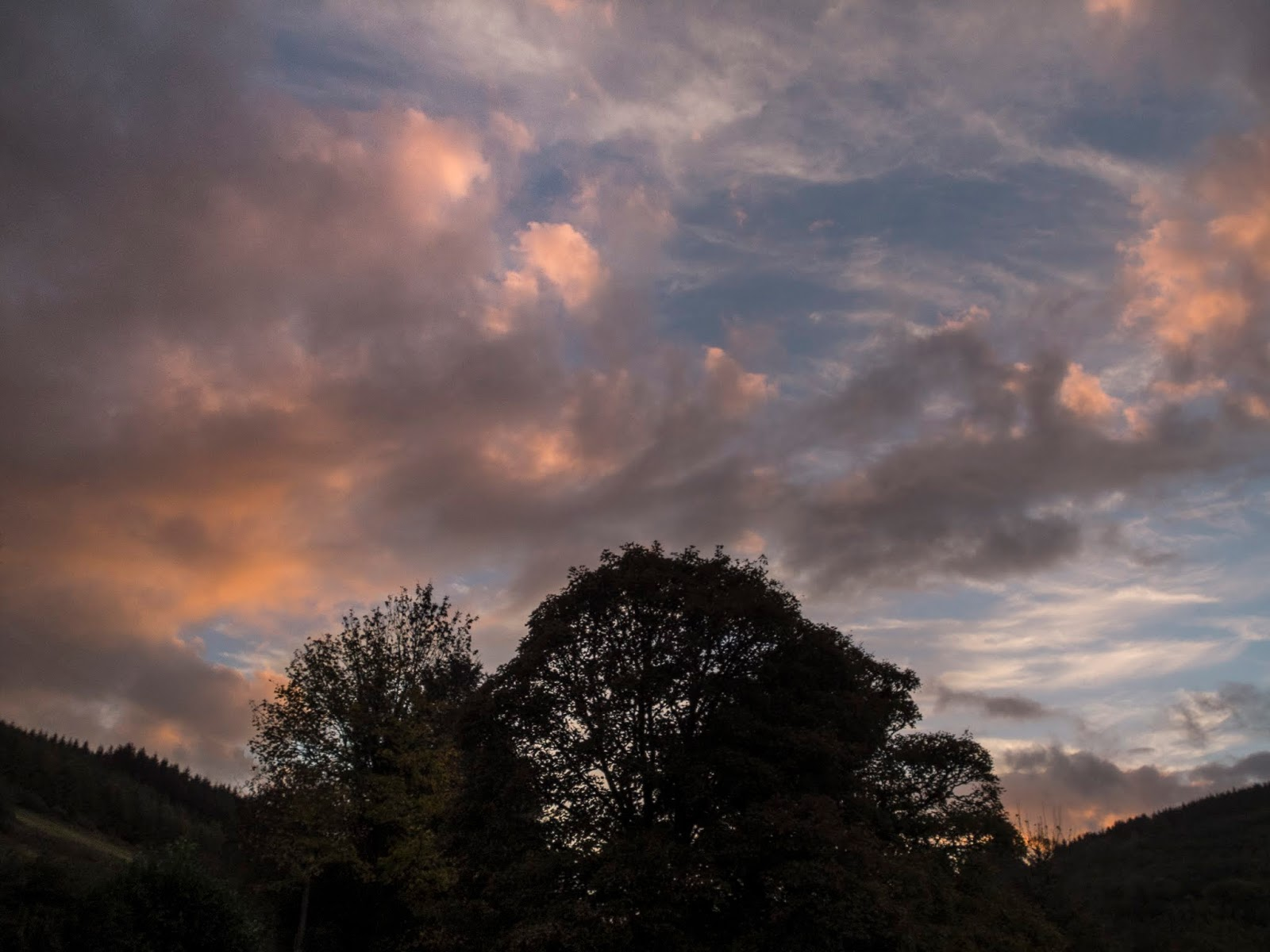 Sunset clouds over mature Maple trees in a valley in the Boggeragh Mountains, North Cork.